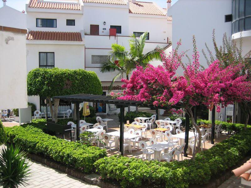 utak Kanári-szigetek, Tenerife, Los Cristianos, Hg Cristian Sur, 0