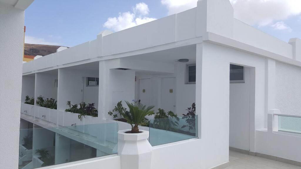 LEMON AND SOUL CACTUS GARDEN — Fuerteventura