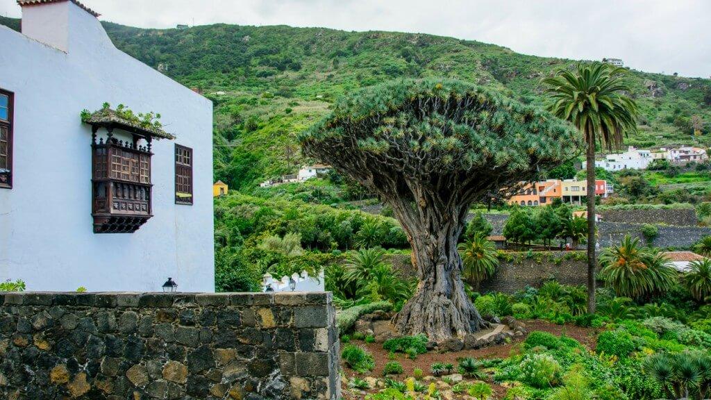 nyaralás olcsón, Tenerife, Programok magyarul, Teide Szigetkörút Magyar Nyelven, 6