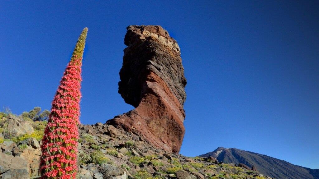 utazási ajánlatok, Tenerife, Programok magyarul, Teide Szigetkörút Magyar Nyelven, 3