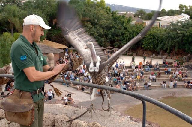 utazási ajánlatok, Tenerife, Programok magyarul, Dzsungel Park, 5