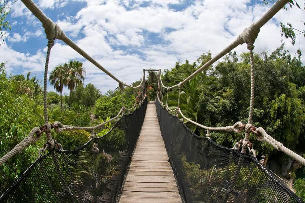 utazási iroda, Tenerife, Programok magyarul, Dzsungel Park, 3