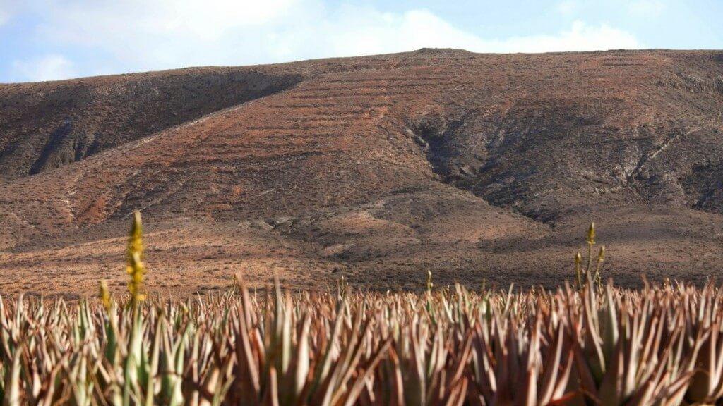 utazások, Fuerteventura, Programok magyarul, Dél- és Közép-fuerteventura Felfedezése, 0