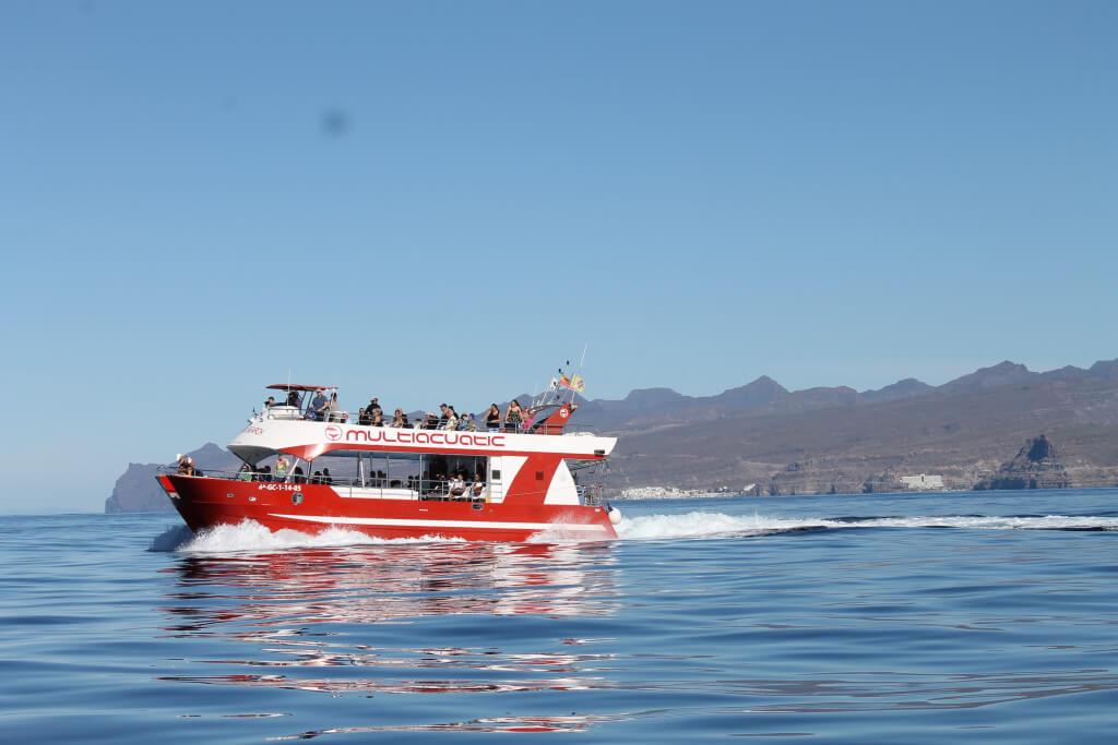 utak, Gran Canaria, Programok magyarul, Bálna- és Delfinles Katamaránnal, 3