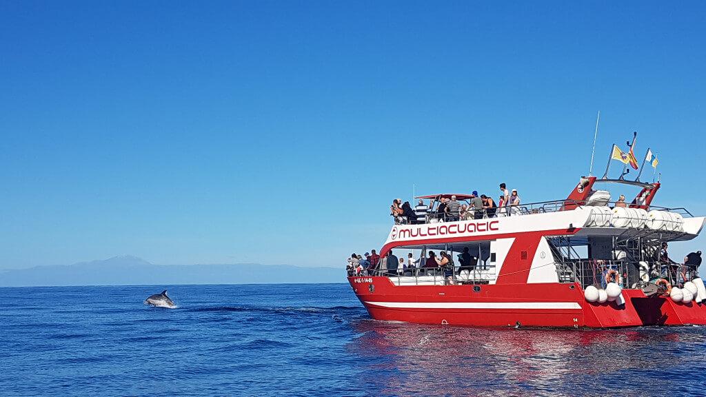 utazás, Gran Canaria, Programok magyarul, Bálna- és Delfinles Katamaránnal, 0
