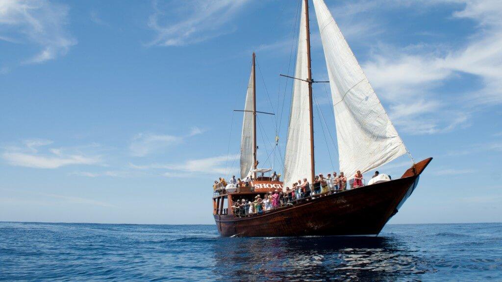 üdülés Kanári-szigetek, Tenerife, Programok magyarul, Hajókirándulás és Bálnales Vitorlással, 1