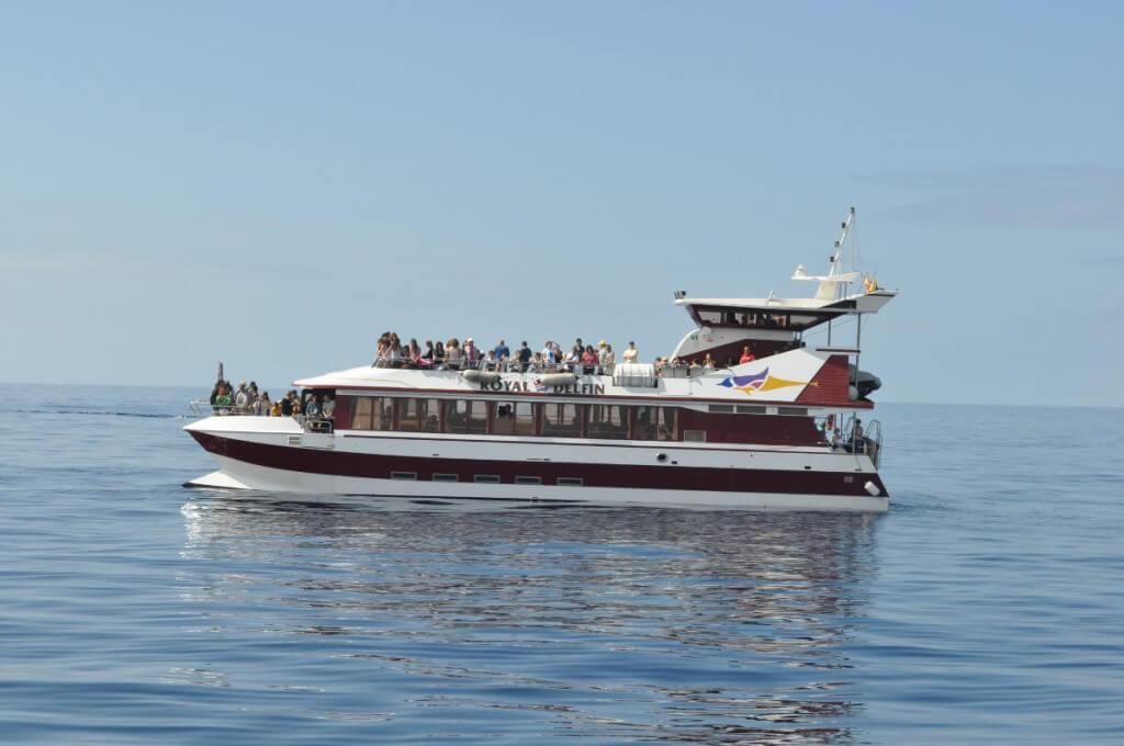 nyaralás all inclusive, Tenerife, Programok magyarul, Hajókirándulás és Bálnales üvegfenekű Hajóval, 0