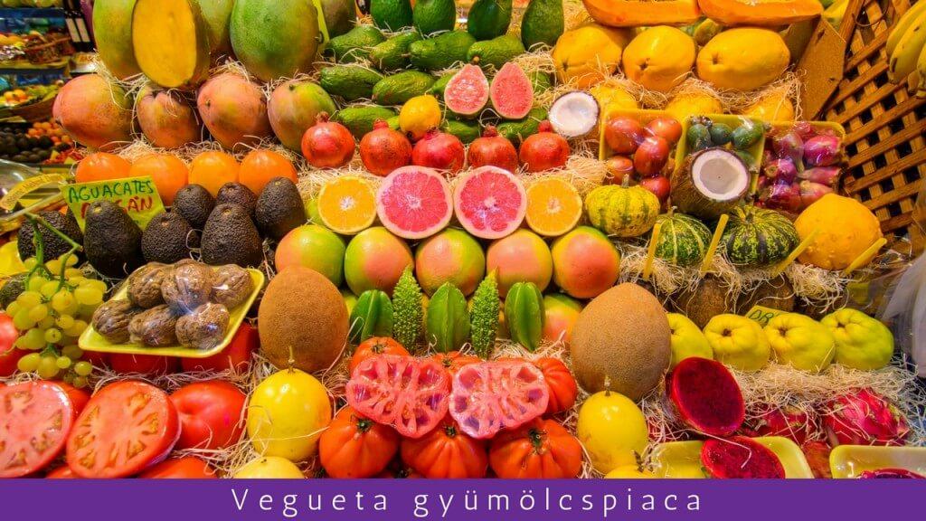 utak, Gran Canaria, Programok magyarul, Exkluzív Las Palmas Városnézés, 1