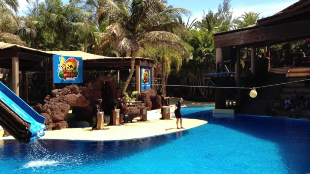 utazási ajánlatok, Fuerteventura, Programok magyarul, Oasis Park, 5