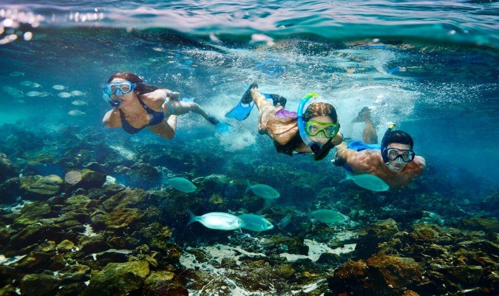 üdülés, Fuerteventura, Programok magyarul, Bálna- és Delfinles üvegfenekű Hajóval, 3