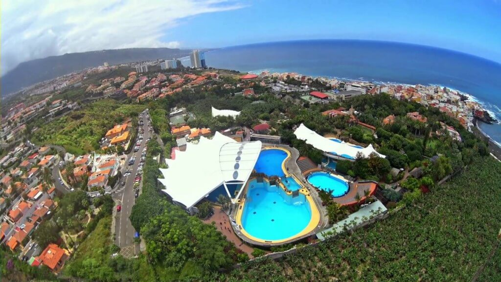 utazás repülővel, Gran Canaria, Programok magyarul, Loro Park, Tenerife, 6