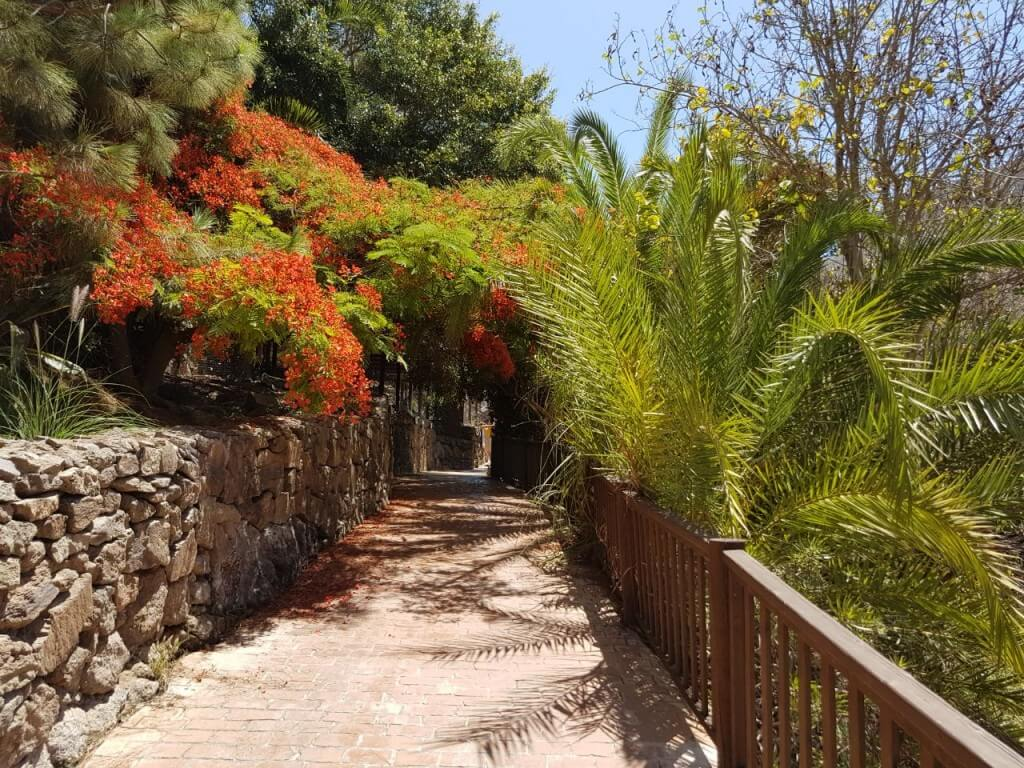 kanári nyaralás, Gran Canaria, Programok magyarul, Palmitos Park, 6