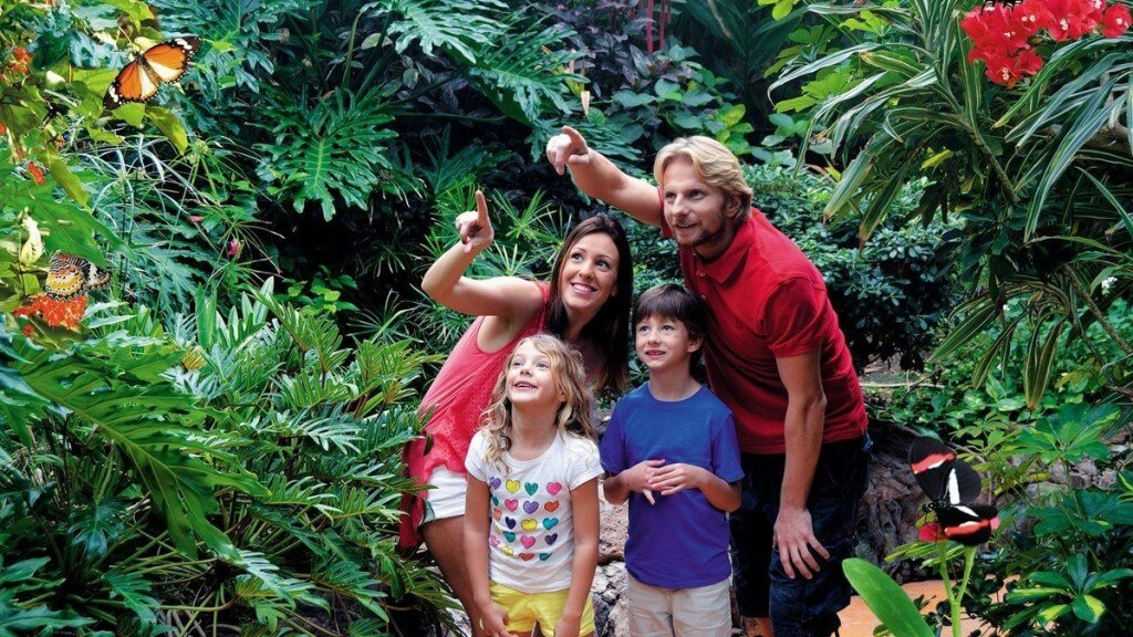 nyaralás all inclusive, Gran Canaria, Programok magyarul, Palmitos Park, 2