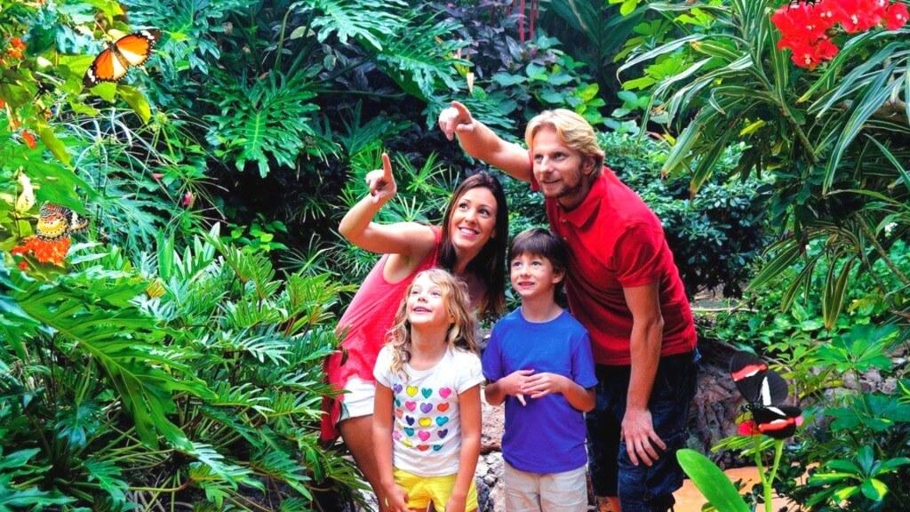 nyaralás, Gran Canaria, Programok magyarul, Aqualand Maspalomas és Palmitos Park Kombi Jegy, 12
