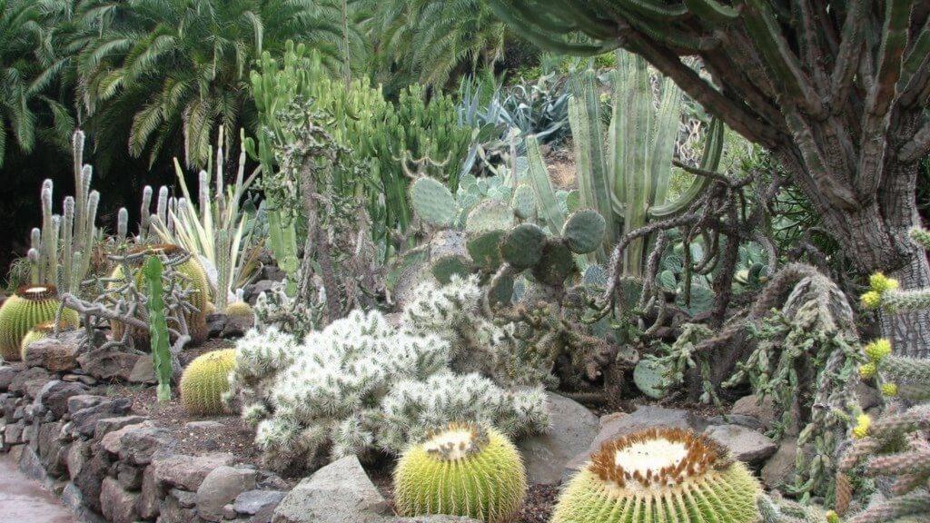 üdülés Kanári-szigetek, Gran Canaria, Programok magyarul, Aqualand Maspalomas és Palmitos Park Kombi Jegy, 8