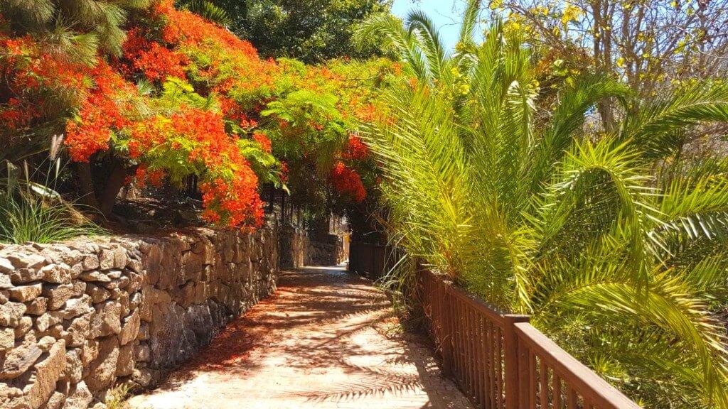 utazás repülővel, Gran Canaria, Programok magyarul, Aqualand Maspalomas és Palmitos Park Kombi Jegy, 10